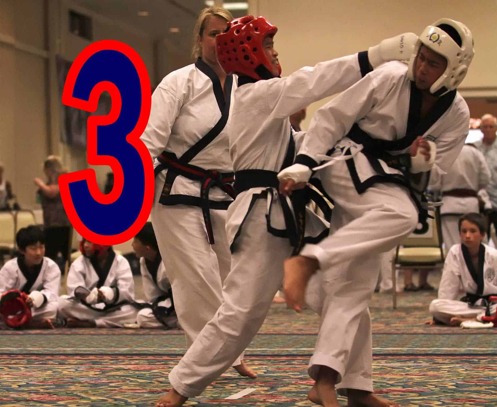 National festival archives united states soo bahk do moo duk kwan can fandeluxe Choice Image